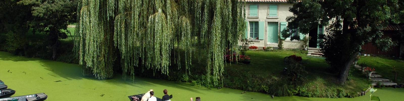 Arçais dans le Marais poitevin