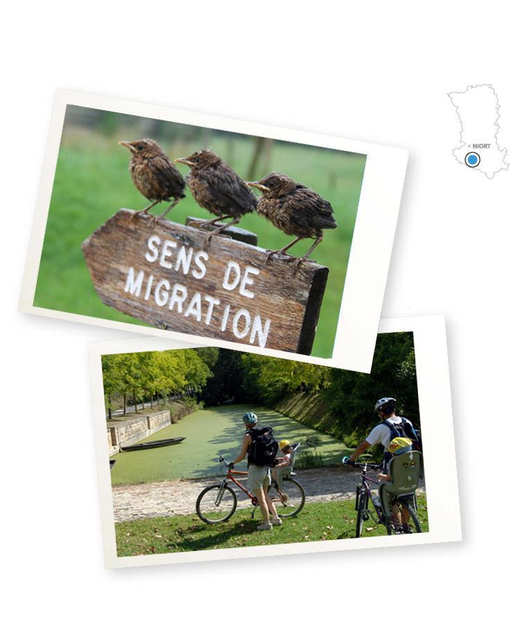 séjour à vélo dans le marais