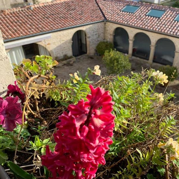 Chambres d'hôtes Logis de la Roche ouvert