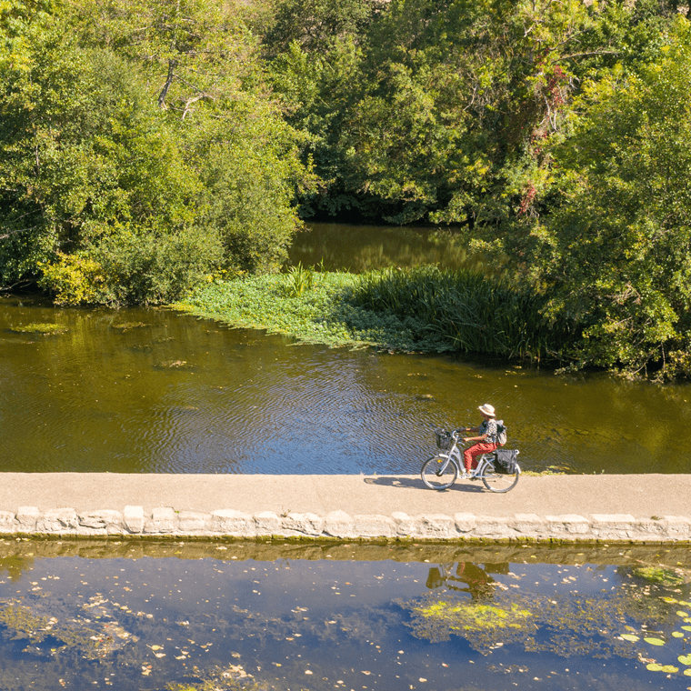 Clo et Clem à vélo